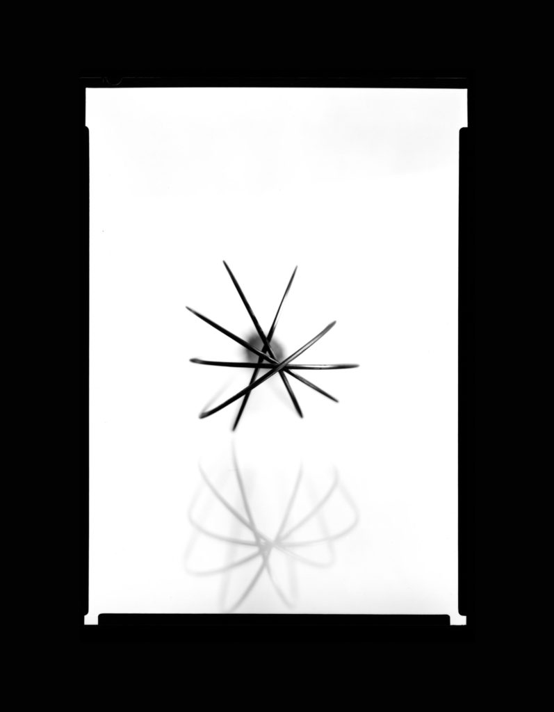 Whisk - Black and White, 5x7